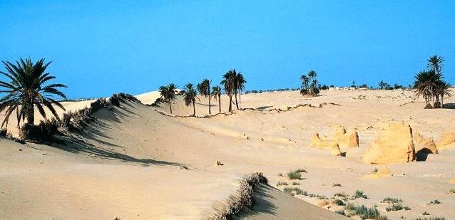 Vacanze in Tunisia
