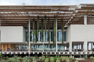 Herzog & de Meuron firmano il Perez Art Museum di Miami: ecco l'ultimo Museo d'Arte da $ 220mln