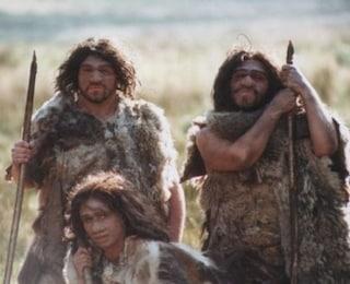 Verdure cotte nella dieta dell'uomo di Neanderthal: cucinava anche cereali