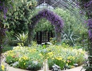 giardino mediterraneo con rampicanti