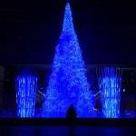 Grande albero fluo