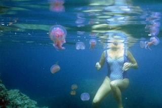 Scottature, punture d'insetto o di medusa… Cosa fare?