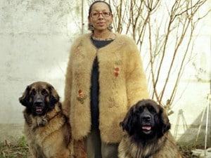 maglioni con peli di cane