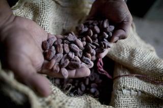 Bellezza fai da te: lo scrub viso al cacao (TUTORIAL)