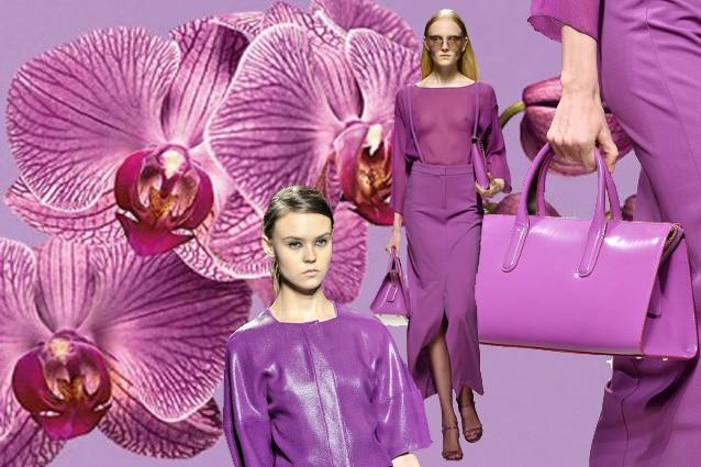 Riadiant Orchid il colore per la primavera estate 2014