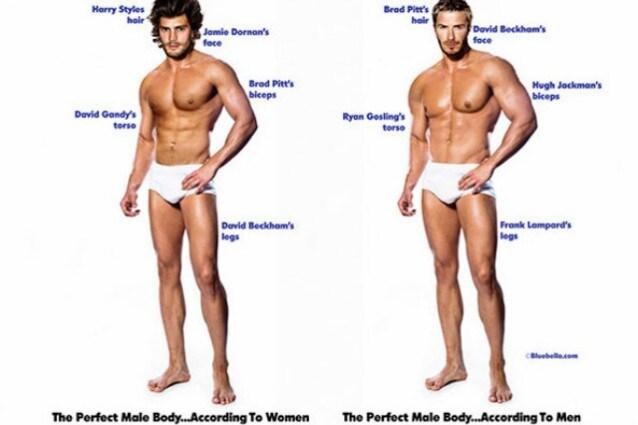 Il Corpo Maschile Perfetto Secondo Donne E Uomini Foto
