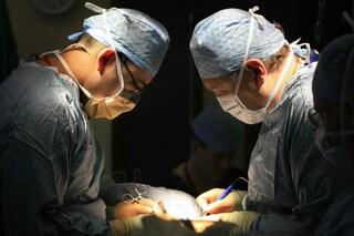 Milano, trapianti record all'ospedale Niguarda: 15 organi salvano 11 pazienti tra cui due bambini