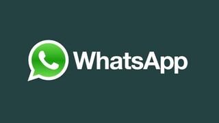 Whatsapp down, l'app di messaggistica non funziona