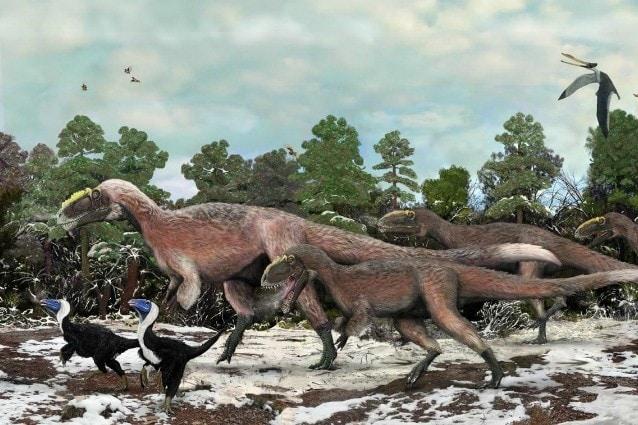Provengono dalla Cina i resti del più grande tra gli animali piumati mai esistiti lungo almeno nove metri per un peso di oltre una tonnellata, cugino del celeberrimo e temutissimo Tirannosauro Rex. Recentemente scoperto, descritto dalla rivista scientifica Nature.