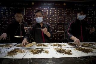 Farmacopea tradizionale cinese, gli ingredienti nascosti