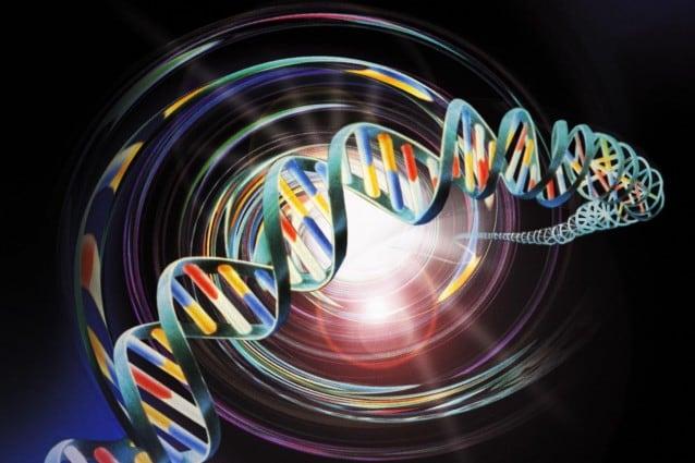 DNA_telecomando