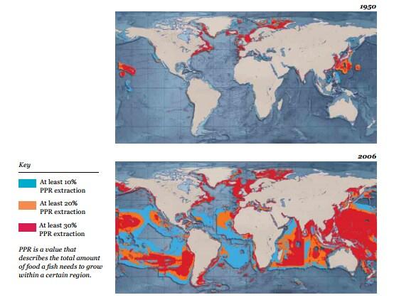 sovrasfruttamento stock ittici
