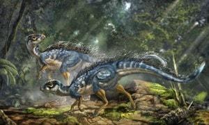dinosauri_sanguecaldo