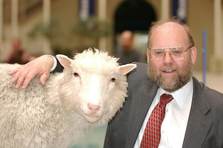 Il punto sulla clonazione, 16 anni dopo la pecora Dolly