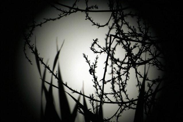 luna blu agosto