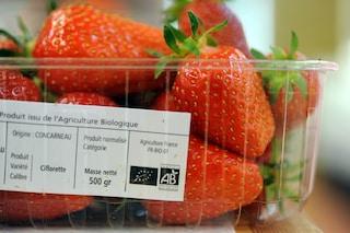 """Il cibo biologico alla prova: """"I benefici per la salute sono pochi"""""""