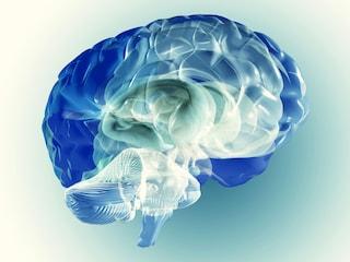 I falsi ricordi possono essere trasferiti nel cervello?