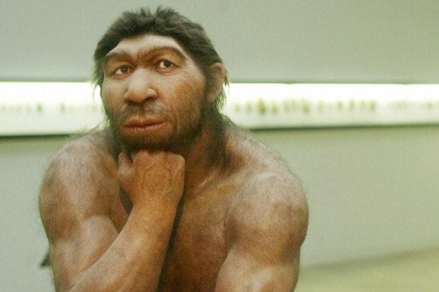 Ricostruzione dell'aspetto dell'uomo di Neanderthal