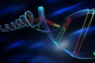 Cromosoma umano artificiale impiantato per la prima volta in una cellula