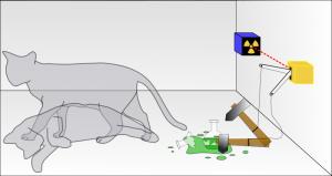Uno schema dell'esperimento mentale delgatto di Schrödinger.