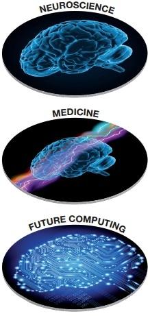 human_brain_project1