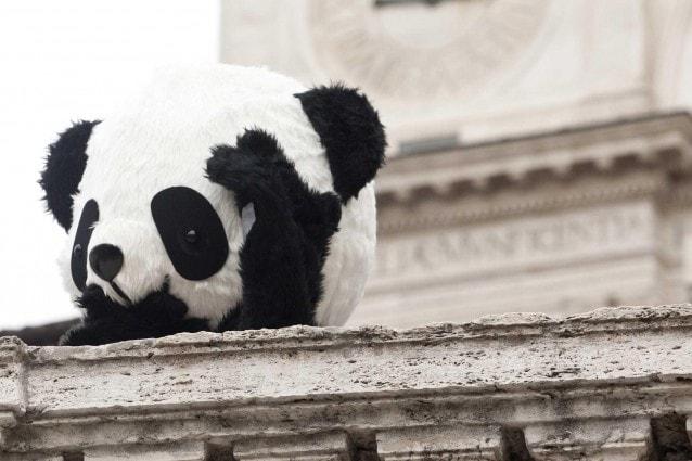 Incontra i Panda, lancio di Global Pambassador 2012