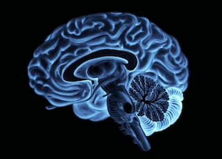 """Il senso di superiorità? E' solo un """"bug"""" del cervello"""