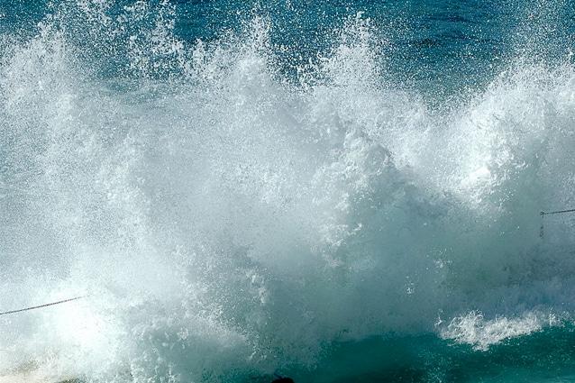 tsunami tagl