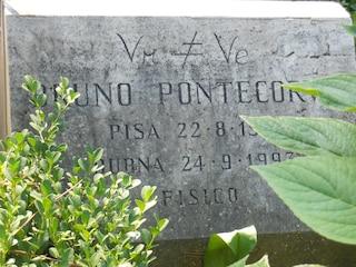 """L'Italia celebra Bruno Pontecorvo, il fisico che passò al """"nemico"""""""