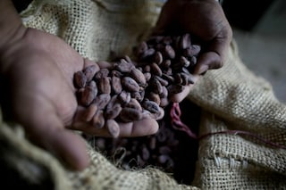 Il cioccolato fondente contiene vitamina D: la verità sullo studio che ci ha fatto sognare