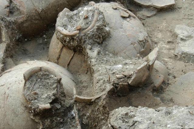 Nell'antichità le anfore erano fondamentali per la conservazione e il trasporto del vino: oggi lo sono per gli studiosi.