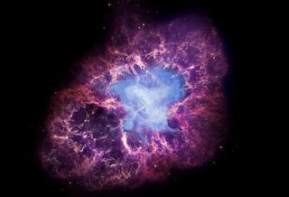 La top ten della scienza nel 2013