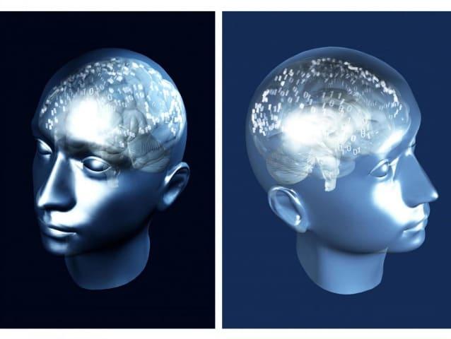 Il cervello continua ad elaborare gli stimoli esterni, ha dimostrato l'EEG