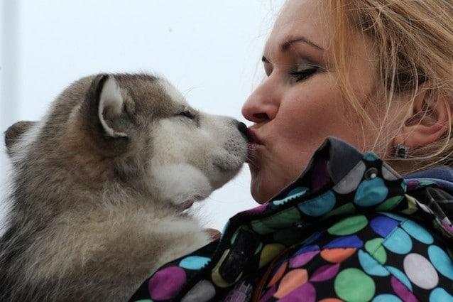 L'amore per il proprio cane è profondo come quello per un figlio