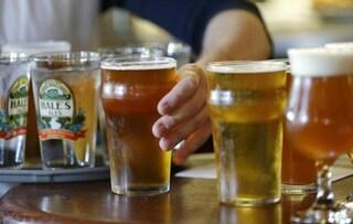 Ebbene sì, bere birra potrebbe far bene al tuo cervello
