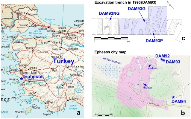 La posizione di Efeso sulle coste Turche e la mappa dell'antica città romana (via PLOS ONE)