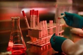 Creato in laboratorio un virus altamente contagioso