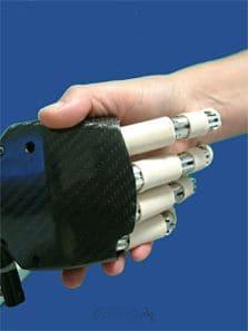 biorobotic_institute