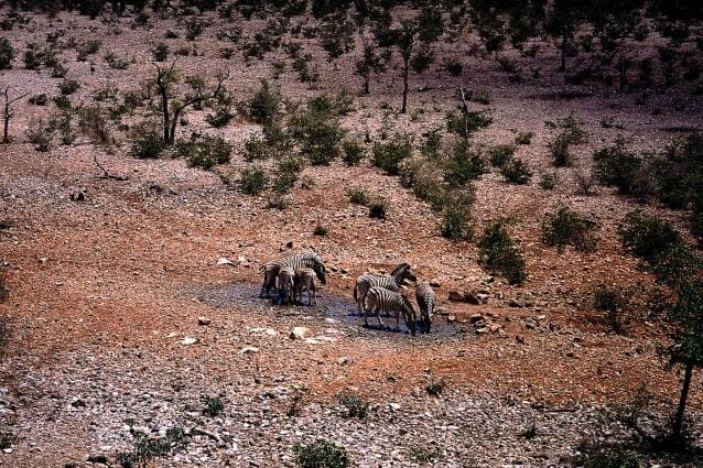 La relazione annuale dell'ONU sulle tendenze climatiche conferma terribili sospetti, il decennio 2000-2010 è stato il più torrido registrato a partire dal 1850. E la colpa è principalmente dei gas serra.
