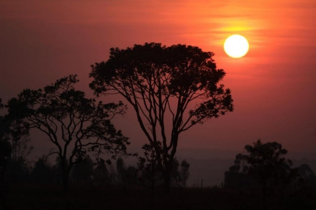 Gli Awà sono una tribù di cacciatori raccoglitori nomadi che vive in aree protette del Brasile. Sono sotto la costante minaccia dei taglialegna che operano anche a pochi metri dai loro territori, sferrando attacchi feroci a chiunque tenti di opporsi alla deforestazione selvaggia, nel corso dell'ultima violenta aggressione, secondo Survival, un bambino Awà sarebbe stato bruciato vivo.