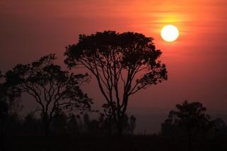 Brasile, il piano segreto di Bolsonaro per cementificare l'Amazzonia