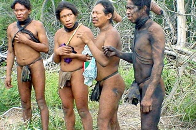 Il Gran Chaco è un ecosistema unico al mondo, compreso tra i confini di Paraguay, Bolivia ed Argentina, minacciato dalla crescente deforestazione che ne ha già vistosamente ridotto il territorio, mettendo in pericolo non solo la biodiversità della regione ma anche la popolazione autoctona minacciata dall'estinzione.