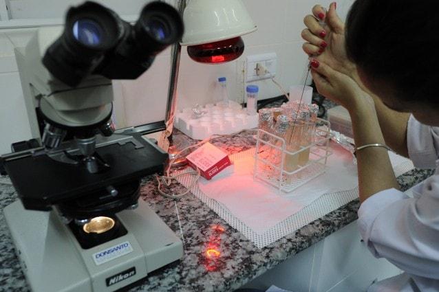 Creato in laboratorio e, per il momento, sperimentato solo sui topi, lo sperma in vitro potrebbe essere la nuova risorsa per combattere la sterilità negli uomini.