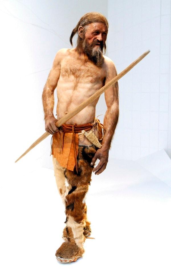 Grazie agli ultimi studi effettuati sulla mummia del Similaun conosciamo, ormai, tutto di Oetzi, colore degli occhi e dei capelli, patologie ereditarie, intolleranze e provenienza. Da quando venne ritrovato, oltre vent'anni fa, l'uomo dei ghiacci è stato il centro dell'interesse di moltissimi studiosi di tutto il mondo.