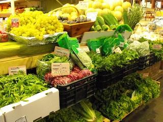"""Stiamo mangiando il pianeta, WWF: """"Dall'alimentazione perdita del 70% della biodiversità"""""""