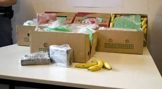 Trovano carico di droga tra le banane, operai non capiscono e gettano via cocaina per un milione