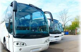 """Treviso, autista di bus """"abbandona"""" 55 ragazzini in autostrada e va via di notte in taxi"""