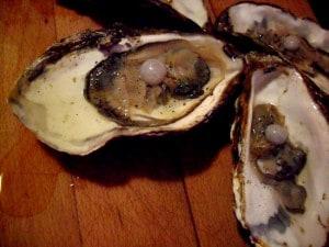 Taranto: compra ostriche per preparare l'antipasto, ritorna a casa e ci trova una perla