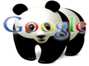 Google-presenta-il-nuovo-algoritmo-Panda
