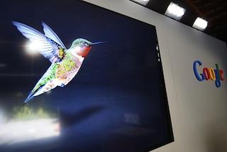 """Google presenta il nuovo algoritmo di ricerca """"Hummingbird"""""""